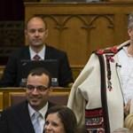 """Hazudott az LMP-ről """"a Mészáros Lőrinccel kávézgató államtitkár"""""""