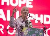 """Jane Goodall: """"Egyes politikusok viselkedésében nem nehéz a hím csimpánzokra ráismerni"""""""