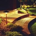 Új őrület: éjszakai kertészet. Képek!