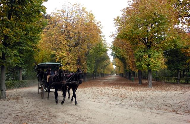 Fiáker a bécsi Schönbrunn parkjában