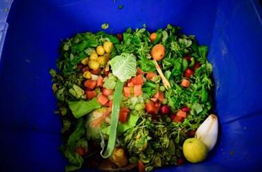 Fejenként 121 kiló élelmiszert dobunk ki a szemétbe évente