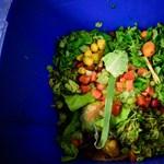 Egy brit család havonta közel 24 ezer forintot dob ki az ablakon, mert nem tud bánni az étellel
