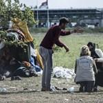 Zalaszentmárton szerint a menekültek primitív, feka kanok