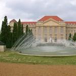 Már a babákat is várja a Debreceni Egyetem
