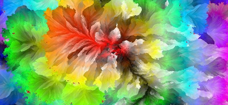 Gyönyörű képekkel nyert egy magyar programozó