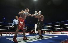 Fideszes országgyűlési képviselő lett a bokszszövetség megbízott pénzügyi biztosa