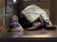 A koronavírus miatt zárva lévő koncerttermet bérel hajléktalanok számára Hamburg