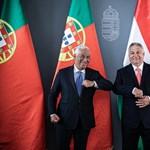 Kanada sárga, Portugália zöld besorolást kapott Müller Cecíliától