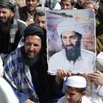 Magáról nézett dokumentumfilmeket Oszama bin Laden