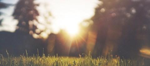 Néhány nap és kezdődik a tavaszi szünet is