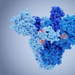 Japán egyetlen külföldit sem enged be az új koronavírus-törzs miatt