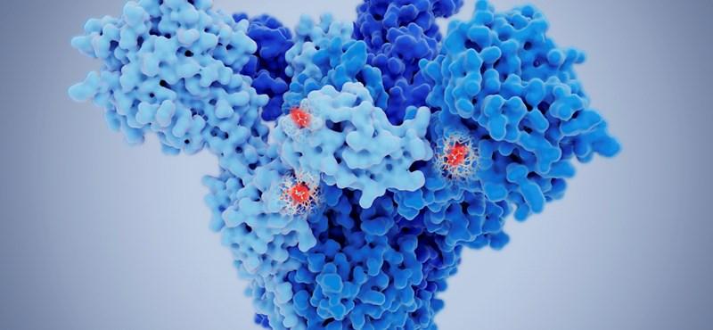 A brit vírusmutációnál 64 százalékkal magasabb a kórházba kerülés kockázata egy tanulmány szerint