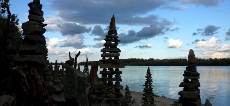 Meddig él egy fa? - 2014-ben eldől a Római-part sorsa