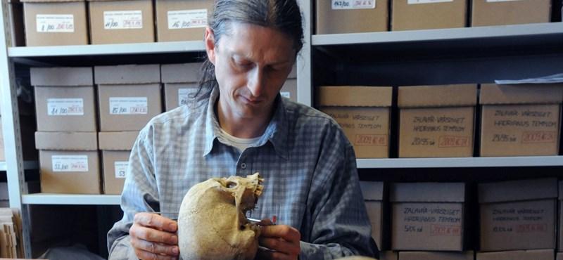 """""""Szorongva várjuk a következő periódust"""" - nem lopta be magát a dolgozók szívébe a Természettudományi Múzeum új főigazgatója"""