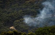 Hőhullám is segítheti az ausztrál bozóttüzek terjedését