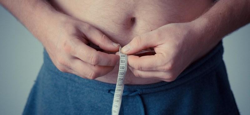Háromszorosára nőtt az elhízottak aránya a világban