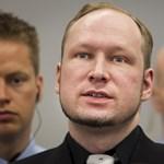 Mit jelent az őrület Breivik esetében?