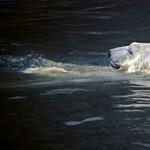 Decemberi meleg sújtja az Északi-sarkvidéket