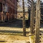 """""""A csecsemők hamar kiszáradtak"""" – 75 éve ezen a napon indult el a vonat Debrecenből Auschwitzba"""