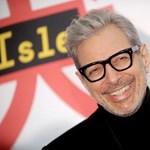 Meglepetés: novemberben jazzalbummal jön Jeff Goldblum