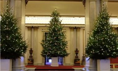 Felállították a karácsonyfákat a Buckingham-palotában – videó