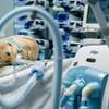RTL: Áramszünet miatt kézzel kellett lélegeztetni egy koronavírusos beteget a pécsi kórházban