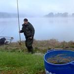 Eszébe ne jusson állami horgászjegy nélkül halat fogni egy tóból!