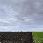 Medgyessy és Gyurcsány államtitkára összevonta agrárcégeit