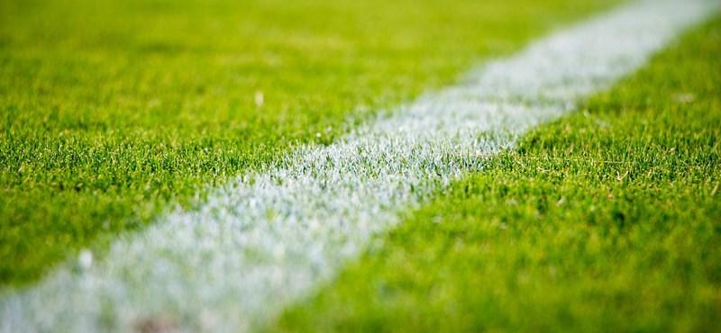 Koronavírusos több focista, elhalasztották az Everton–Manchester City-rangadót