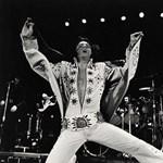 Elvis Presley 80