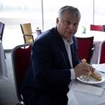 Orbán Viktor új fociszerelme az NK Osijek
