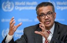 Etiópiában forradalmár is volt, most a világ egészségének őrangyala