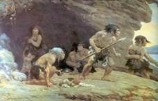 Ősi ragasztót használhatott a neandervölgyi ember