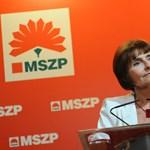 Az MSZP négy kérése az emberi jogok védelméért