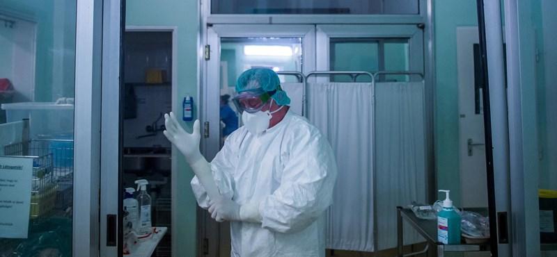 495 új koronavírus-fertőzöttet találtak