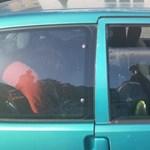 Rendőrök mentettek meg egy tűző napon autóba zárt kislányt Dorogon