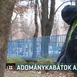 Ingyen elvihető kabátokat akasztottak ki Szegeden egy parkban