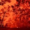Aggasztó előrejelzés jött az ausztrál tüzekről, azonnal cselekednünk kell