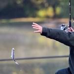 Reszkethetnek az orvhorgászok, Toyotával jönnek a halőrök