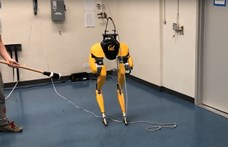 Állj félre, Boston Dynamics: elkészült a robot, ami önmagát tanította meg járni – videó