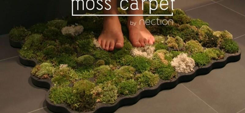 Itt az új őrület: az élő mohából készült fürdőszoba szőnyeg