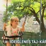 Külföldről hazatelepülő magyar családok: a TAJ-kártyára is rá lehet faragni