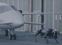 Videó: Rákötötték a robotkutyára a 3 tonnás repülőgépet, és simán elhúzta