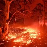 Kis híján 50 fok: 80 éves hőségrekordok dőltek meg Ausztráliában