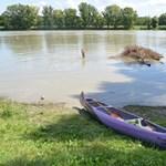 Európában a Duna a legfertőzöttebb folyó