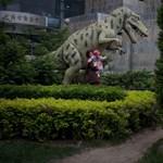 Falánk tinédzser lehetett a Tyrannosaurus rex