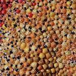 Fülöp Gábor több ezer katicát ejtett fogságba szobrán