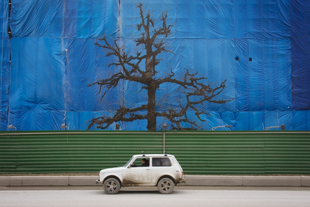 Fák világnapja - RUSSIAN FEDERATION, Sochi : A lone tree rises between a well-used contruction track and the scaffolding cover of an uncompleted building in Krasnaya Polyana a site of Sochi 2014 Olympic venues some 50 km of the Black Sea resort of Sochi,