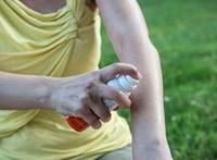 A klímaváltozással új szúnyogfajok is érkeznek. Ez veszélyes!