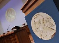 Átmeneti testület ítélheti oda a botrány miatt ki nem osztott irodalmi Nobel-díjat